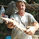 Дмитрий, 54 года