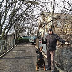 Фотография мужчины Николай, 71 год из г. Золотоноша