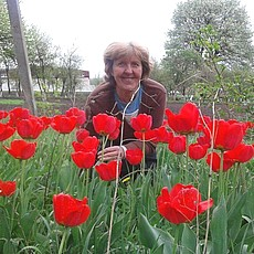 Фотография девушки Антонина, 61 год из г. Балаклея
